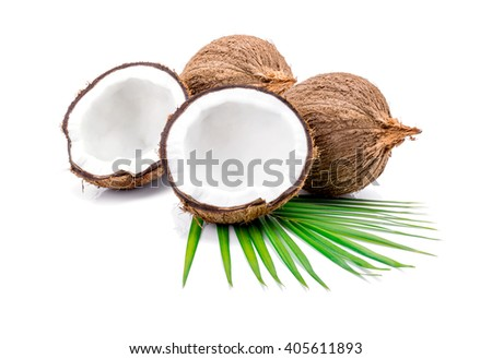 close up of a coconut on white background. - stock photo