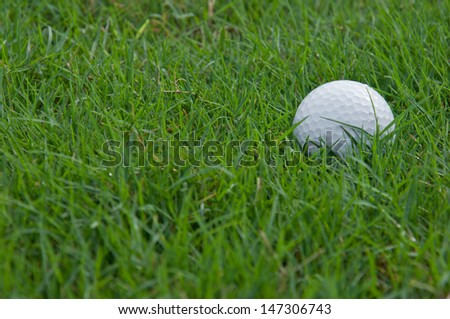 Close up of a golf ball in the rough  - stock photo