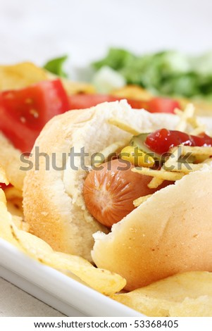 close up of a hot dog with potato and vegetables - stock photo