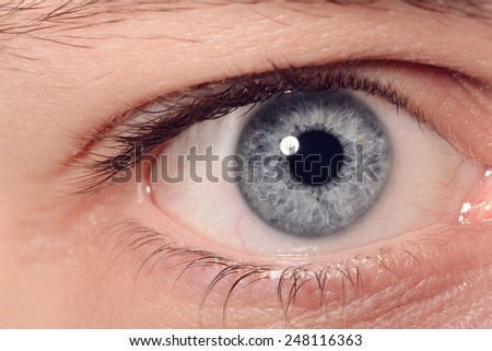 Close Up Of A Man Eyes - stock photo