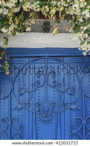 Close-up of a old blue painted wrought iron door  with a lion head shaped door knob and a jasmine plant above - stock photo