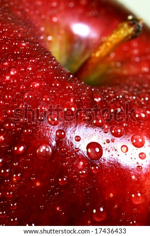 close up of a red delicious apple - stock photo