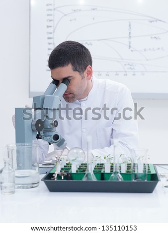 close-up of a scientist in a chemistry lab analyzing under microscope on a worktable with seedlings and lab tools and a white-board on the background - stock photo