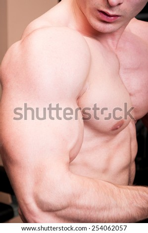 Close up of a strong manly body builder arm with a big bicep - stock photo