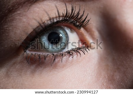Close up of a woman's blue eye.   - stock photo