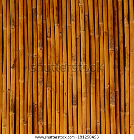 Close up of Bamboo wall for background - stock photo