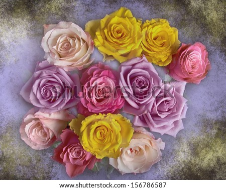 Close-up of beautiful mixed colorful bouquet of roses with colors of yellow, red, pink, lavender and purple on a texture background. - stock photo
