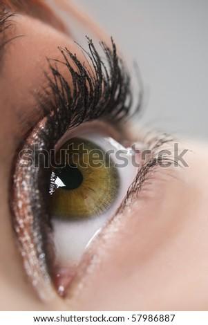 Close up of beautiful woman`s open brown eye - stock photo