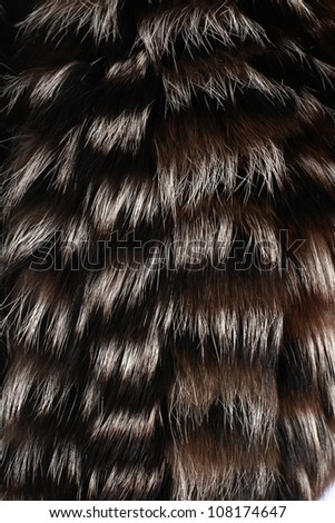 Close up of black and white fur background - stock photo