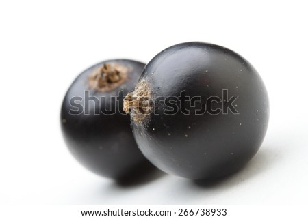 Close - up of blackcurrants on white background - stock photo
