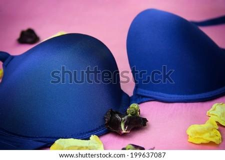 Close up of blue bra. - stock photo