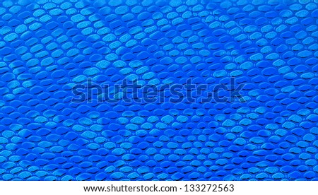 Close-up of blue snakeskin leather - stock photo