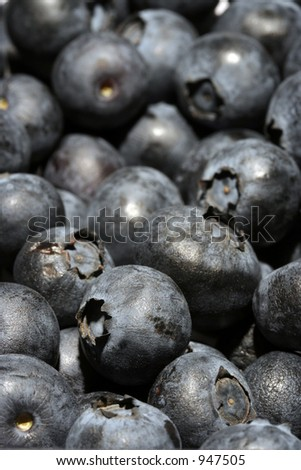 Close up of Blueberries - stock photo