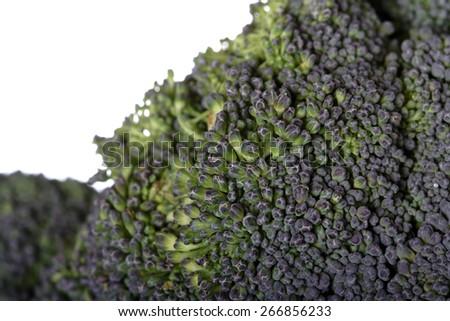 Close-up of broccoli on white background - stock photo