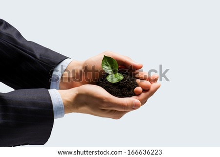 Close up of businessman hands with sprout in palms - stock photo