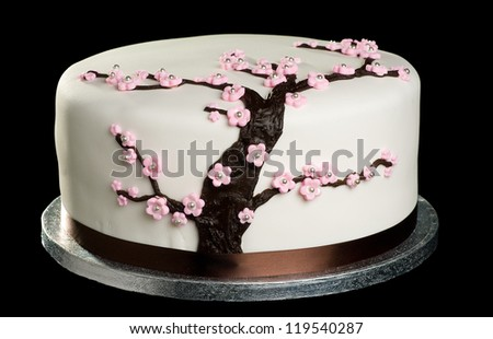 Close up of cake with cherry blossom on isolated black background - stock photo