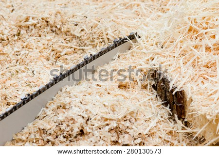 Close up of chainsaw blade and sawdust - stock photo