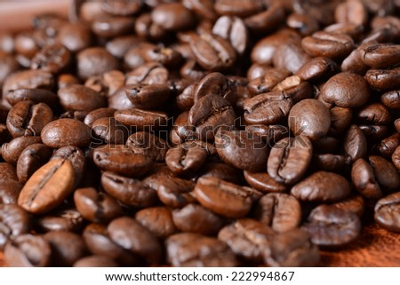 Close-up of coffee beams - stock photo