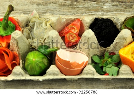 Close up of compost fruit and vegetables in egg carton - stock photo