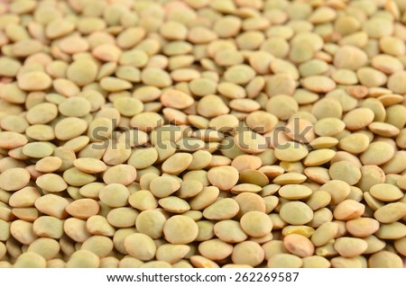 Close up of dried green lentil background - stock photo