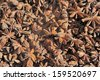 Close-up of dried star anise seed at a market - stock photo