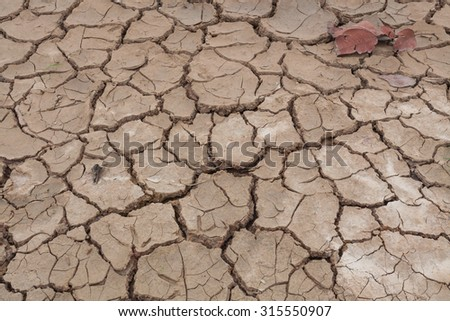 Close-up of dry soil cracked texture or background. - stock photo