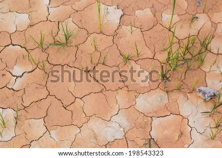 Close-up of dry soil in arid climate. Cracked ground in a desert. - stock photo