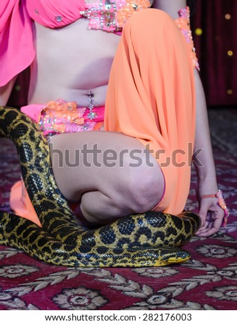 Close Up of Exotic Female Dance Performer in Brightly Colored Costume Kneeling with Large Constrictor Snake on Stage - stock photo
