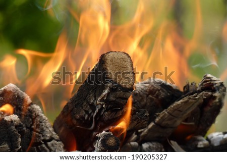Close-up of fire burning pieces of wood, sitting in a pile, on a green background, ready for a barbecue. - stock photo