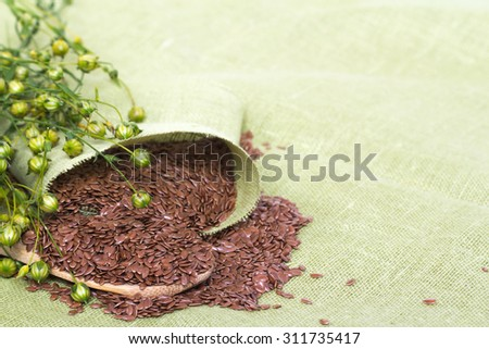 Close-up of flax plant and flax seeds on linen background - stock photo