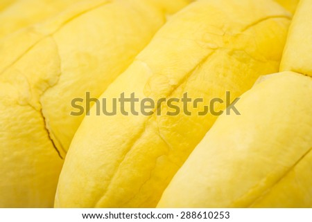 Close up of fresh durian yellow meat for delicious tropical fruit background - stock photo