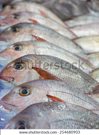 Close up of Fresh Fish on ice at the fish market, shallow depth of field - stock photo