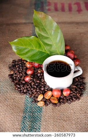 Close up of fresh raw coffee beans with leaf on texture background, selective focus.  - stock photo