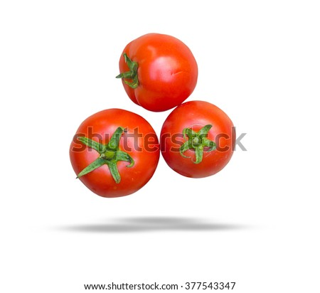 Close-up of fresh, ripe tomatoes on white background with save paths. - stock photo