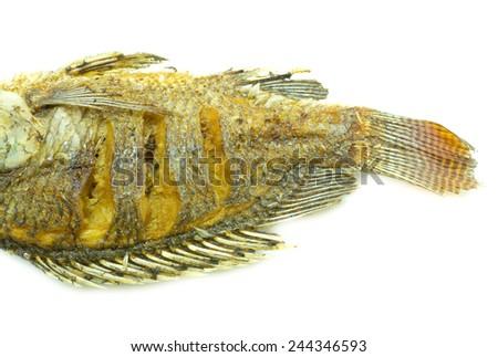 close up of fried fish on white background - stock photo