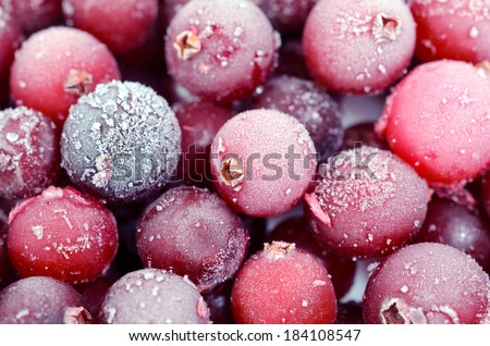 Close up of frozen cranberries - stock photo