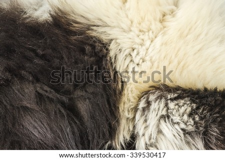 Close-Up of Fur on a Black and White Ruffed Lemur - stock photo