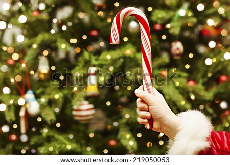 Close up of girl hand holding christmas Candy Cane on fir-tree with lights - stock photo