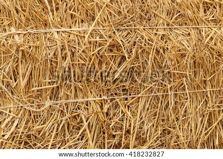 Close up of haystack for background. - stock photo