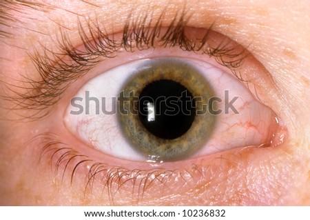 Close-Up of hazel green Irish eye - stock photo