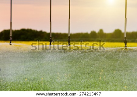 Close up of irrigation system splashing water in wheat field - stock photo