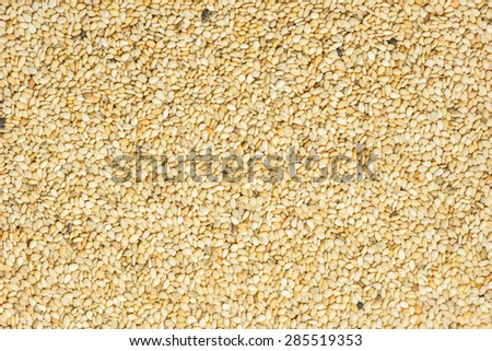 Close up of lots of toasted sesame seeds - stock photo