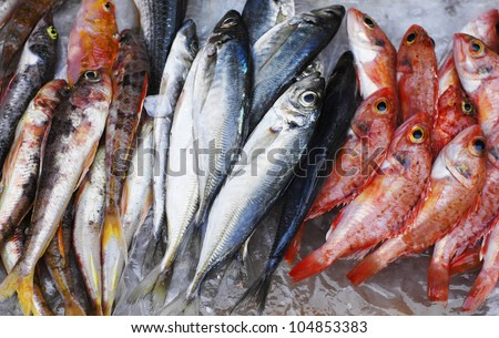 Close up of lovely fresh fish in a market - stock photo