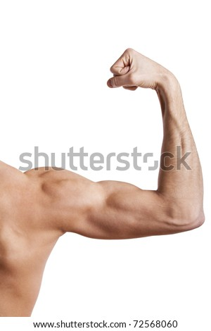 Close up of man's muscular arm - stock photo