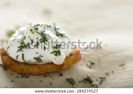 Close up of one fresh cream cheese spread with dill on bake rolls - stock photo