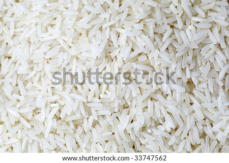 close up of  organic jasmin Rice from Asian - stock photo
