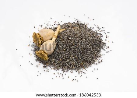 Close up of Poppy seeds isoalted on white background - stock photo