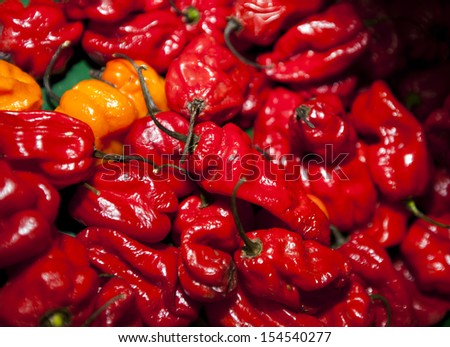 Close-up of red chillies in grocery store - stock photo