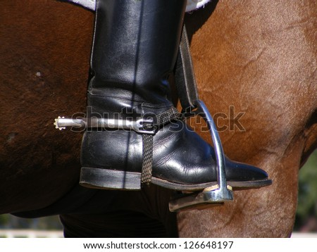 Close up of rider leg with disk spur on it on brown horse - stock photo