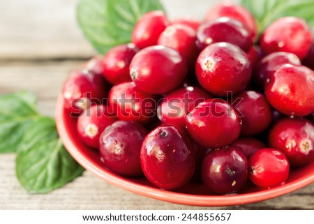 Close-up of ripe cranberries with mint leafs - stock photo